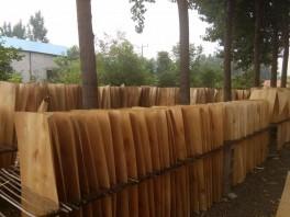 桦木异形单板批发